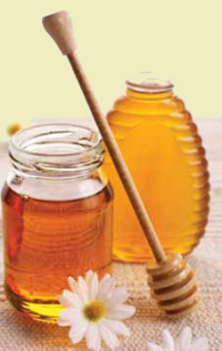 Mill Creek Honey Farms - Open Year-Round
