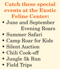 The Exotic Feline Rescue Center