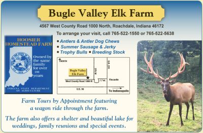 AD: Bugle Valley Elk Farm