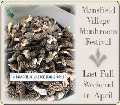 AD: Mansfield Village Mushroom Festival